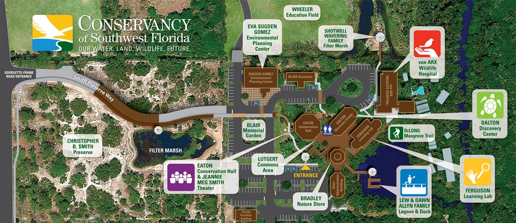 Conservancy of Southwest Florida Nature Center map. Image courtesy of Conservancy of Southwest Florida.