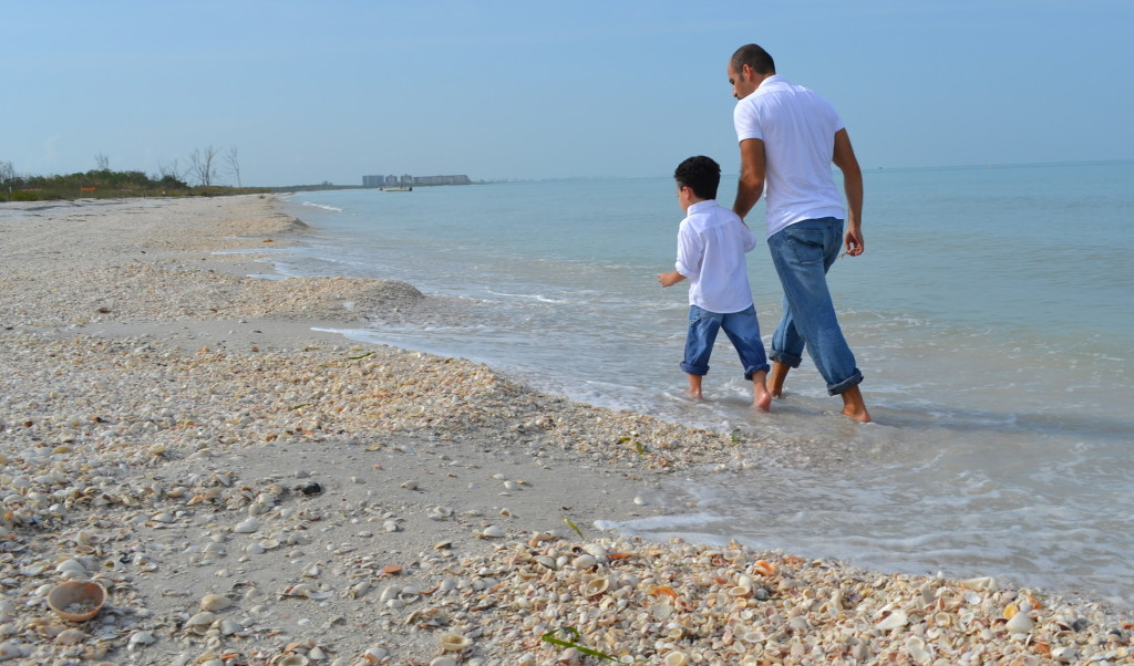 Lover's Key Sate Park's beach is filled with seashells.