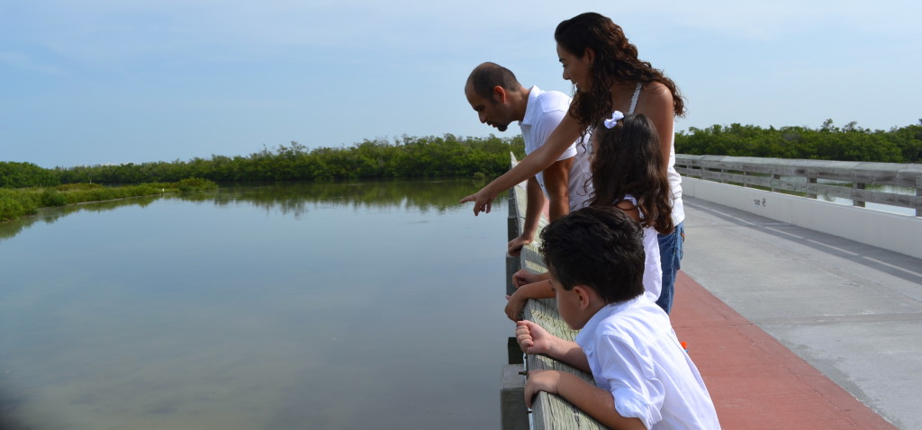 Our family looking for manatees