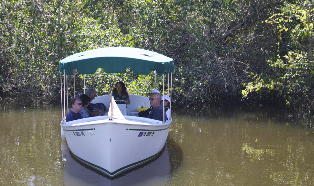 Exploring the mangrove lined river aboard electric boats.