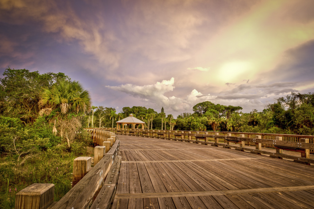 Smith Preserve Way, the new entrance to the Conservancy of Southwest Florida. Photo courtesy Dennis Goodman. All Rights Reserved.