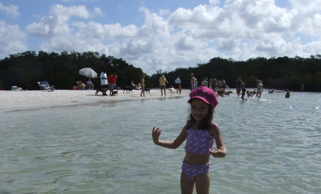 My little girl having a great time at Dog Beach.  Photo: Paula Bendfeldt-Diaz. All Rights Reserved.