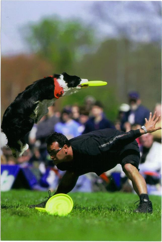 Photo: AirK9z Dog Entertainment. All Rights Reserved.