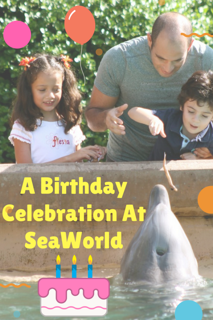 A Birthday Celebration At SeaWorld
