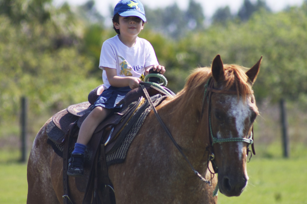 Pony rides at Balloons Over Paradise Festival. Photo: Paula Bendfeldt-Diaz. All Rights Reserved.