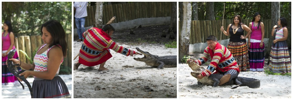 Alligator wrestling at Balloons Over Paradise festival. Photos: Paula Bendfeldt-Diaz. All Rights Reserved.