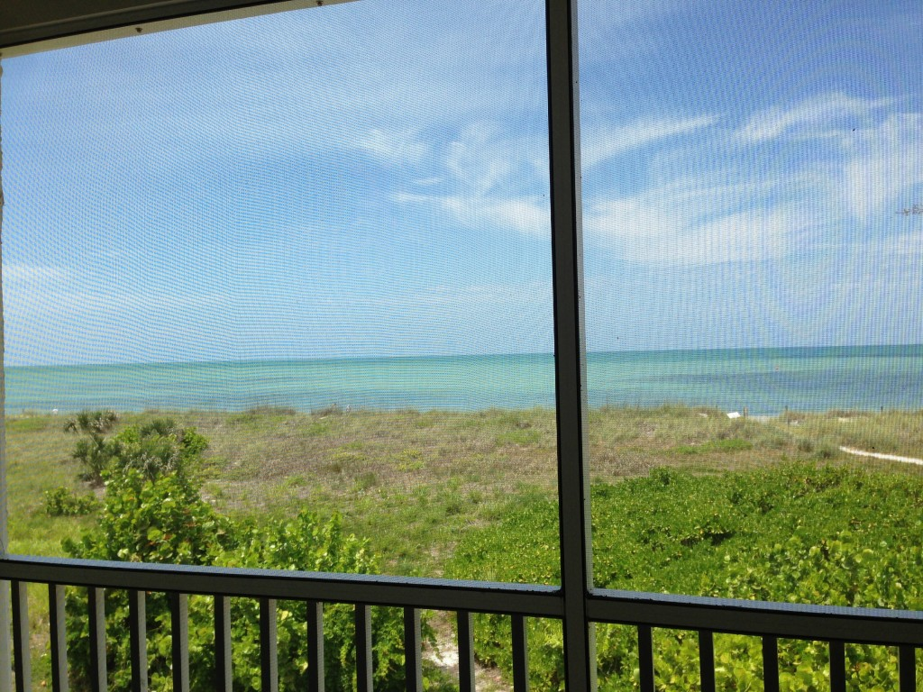 View from the screened porch of our Beach Villa.