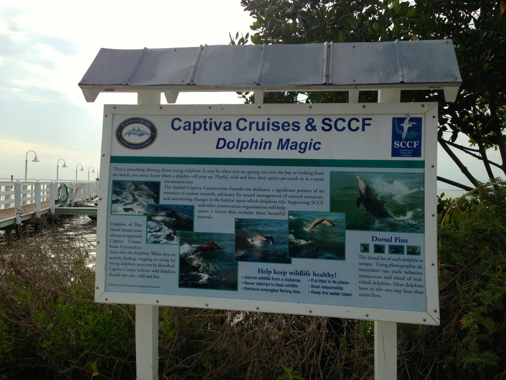 Getting ready to board the Captiva Cruise boat at McCarthy's Marina in Captiva Island. Photo: Paula Bendfeldt-Diaz. All Rights Reserved.