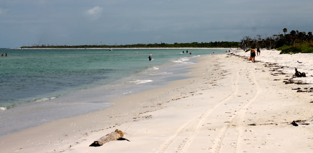 Cayo Costa's 9 miles of undeveloped beach. Photo: Paula Bendfeldt-Diaz. All Rights Reserved.