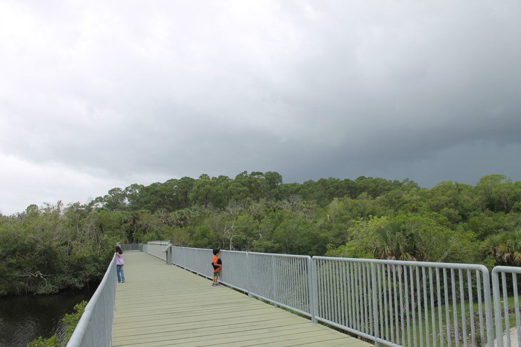 The observation bridge over Henderson Creek.