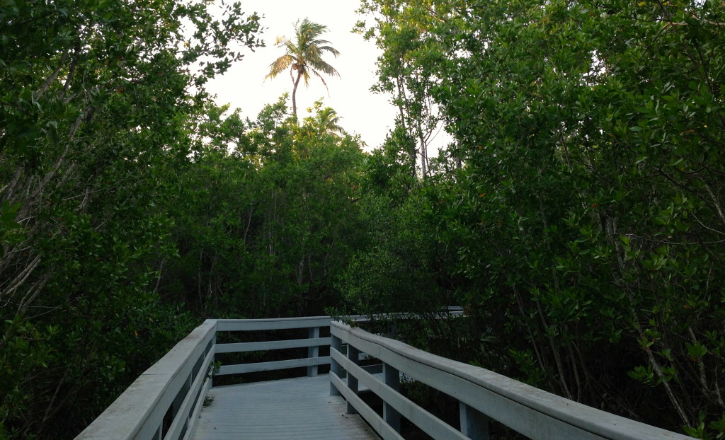 nature trails in Sanibel Island