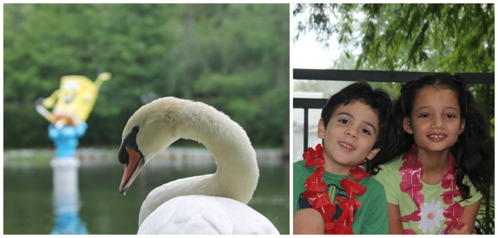 We had a nice walk along the lagoon and watched the character fountains and the swan. Photos: Paula Bendfeldt-Diaz, all rights reserved.