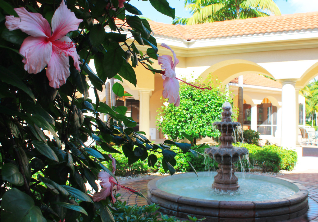 Westin Cape Coral Resort at Marina Village fountain and tropical flowers