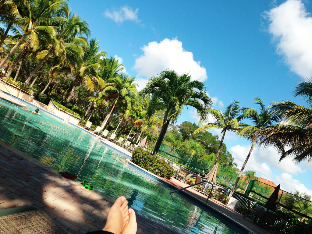 Westin Cape Coral pool with palm trees
