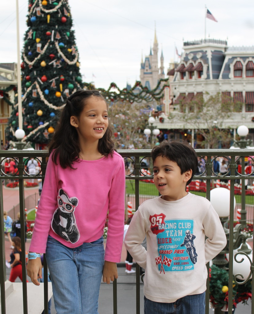 Disney Holidays Magic Kingdom