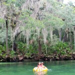 Blue Springs Park Florida tubing in natural lazy river