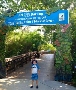 "J.N. ""Ding"" Darling National Wildlife Refuge, Best Nature Hikes for Families in Southwest Florida"