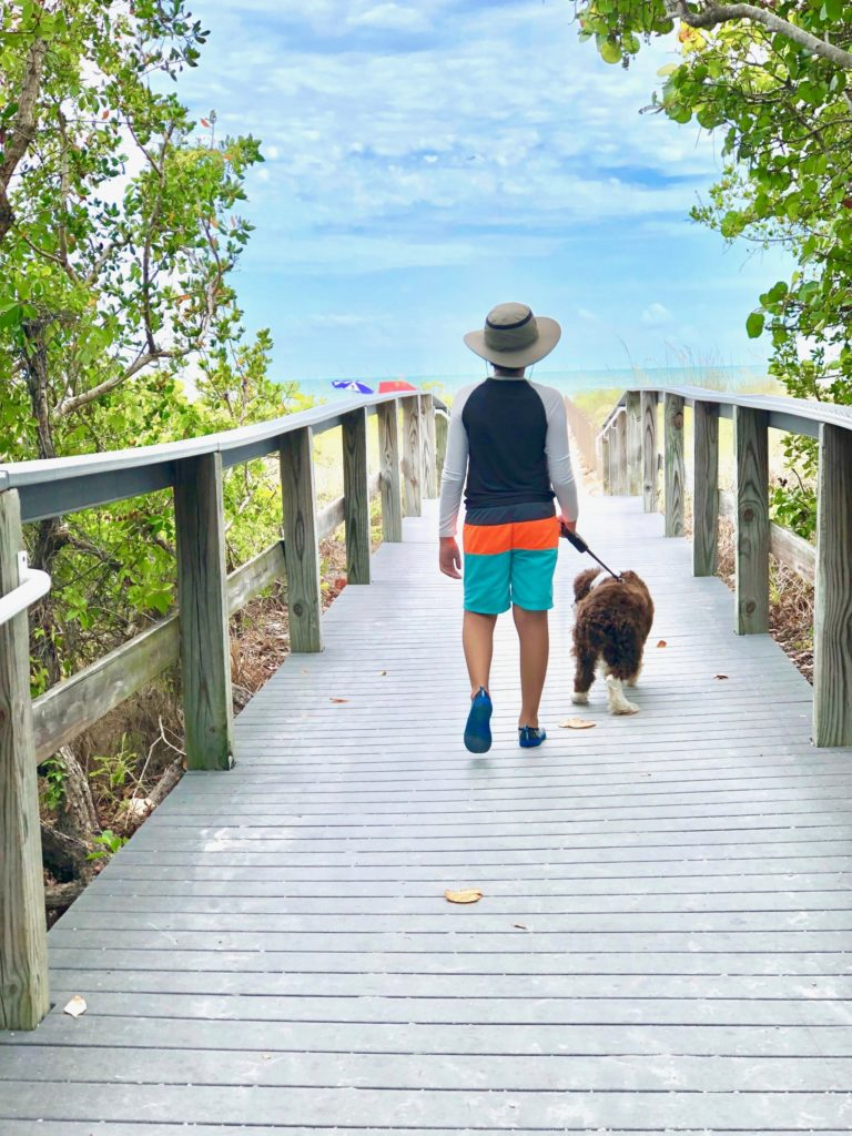 The Best Beaches for Dogs in Southwest Florida