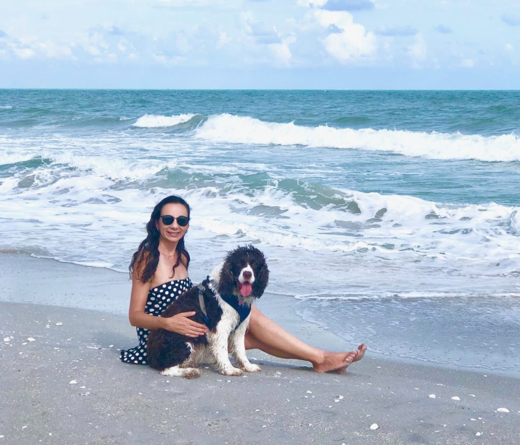Algiers or Gulfside beach in Sanibel a dog-friendly beach